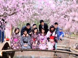 Học Bổng và ưu đãi tuyển sinh du học nhật kỳ tháng 4 – 2017