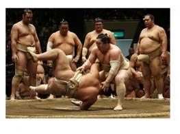 """Sumo Nhật Bản:""""Môn võ của văn hóa và tôn giáo"""""""