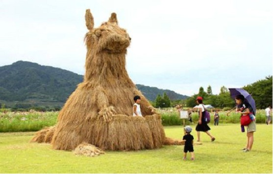 lễ hội nigata nhật bản