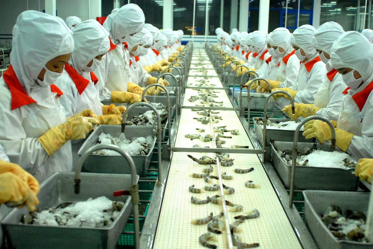 Công nhân lao đông trong các nhà máy của nhật bản
