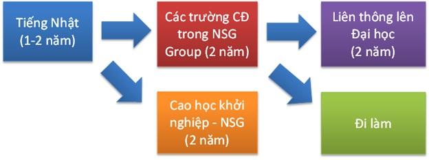 chương trình học tại trường NSG