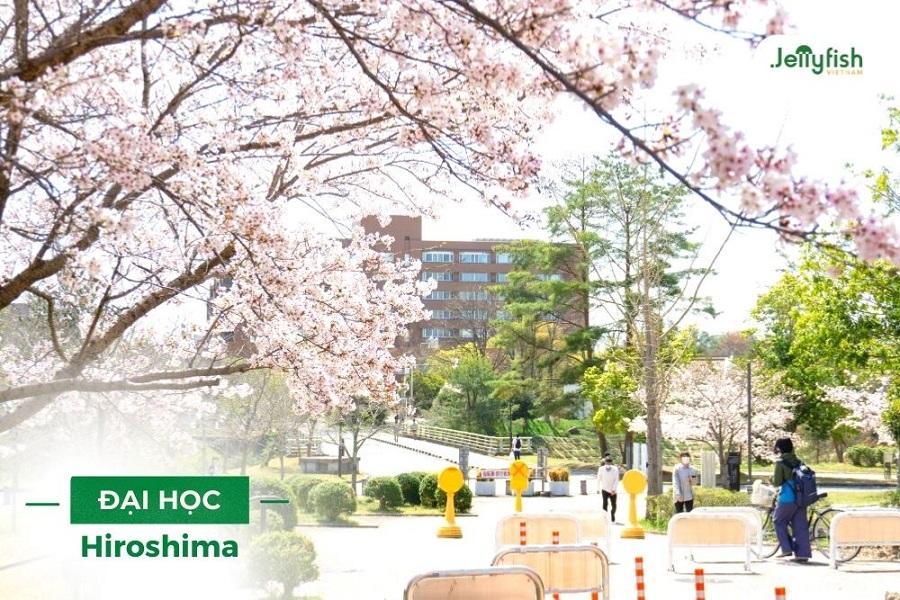 Học bổng Đại học Hiroshima