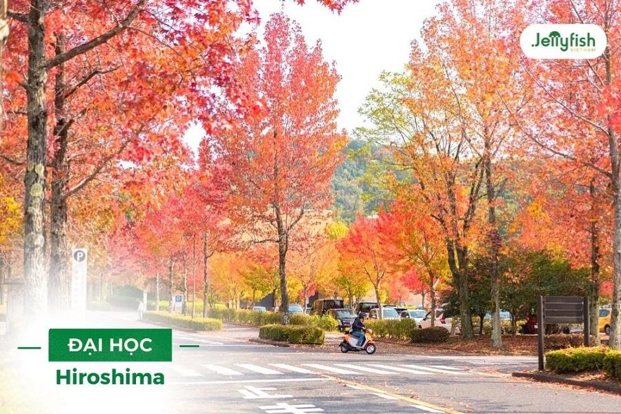 Mùa thu tại Hiroshima University