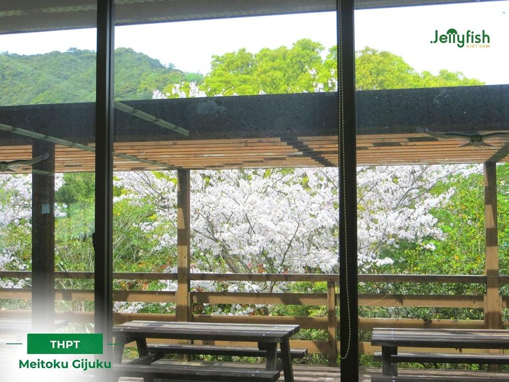Cảnh quan trường Meitoku