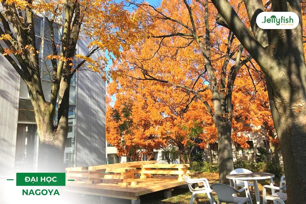 Khuôn viên trường vào mùa thu