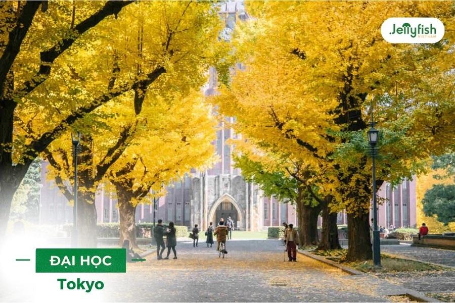 Đại học Tokyo - ảnh 4