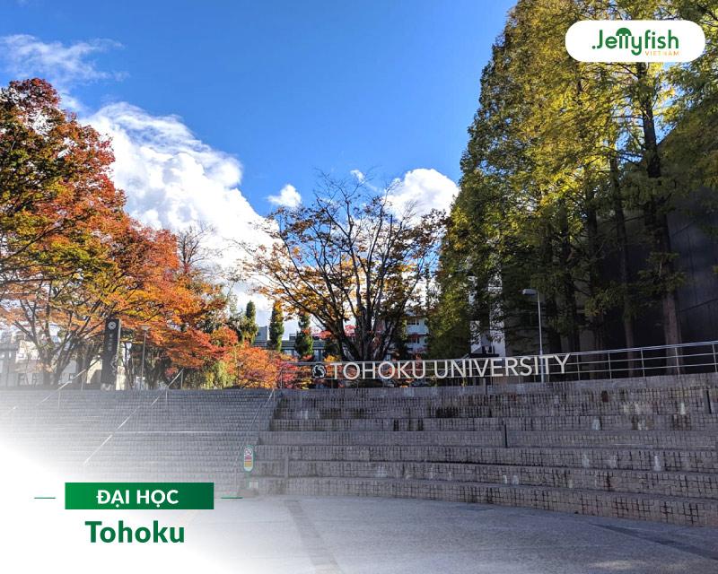 Tohoku là một trong những đại học lâu đời và lớn nhất tại Nhật Bản