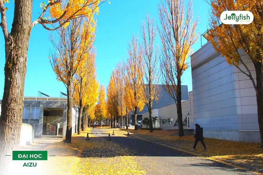 Du học Nhật Bản tại Đại học Aizu