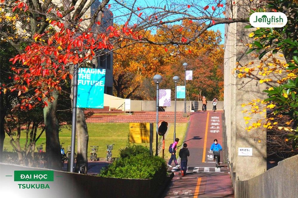 Khuôn viên trường Tsukuba - ảnh 6