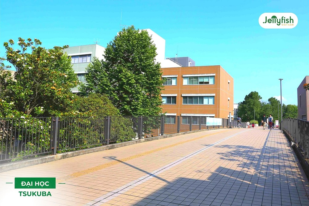 Khuôn viên trường Tsukuba - ảnh 4