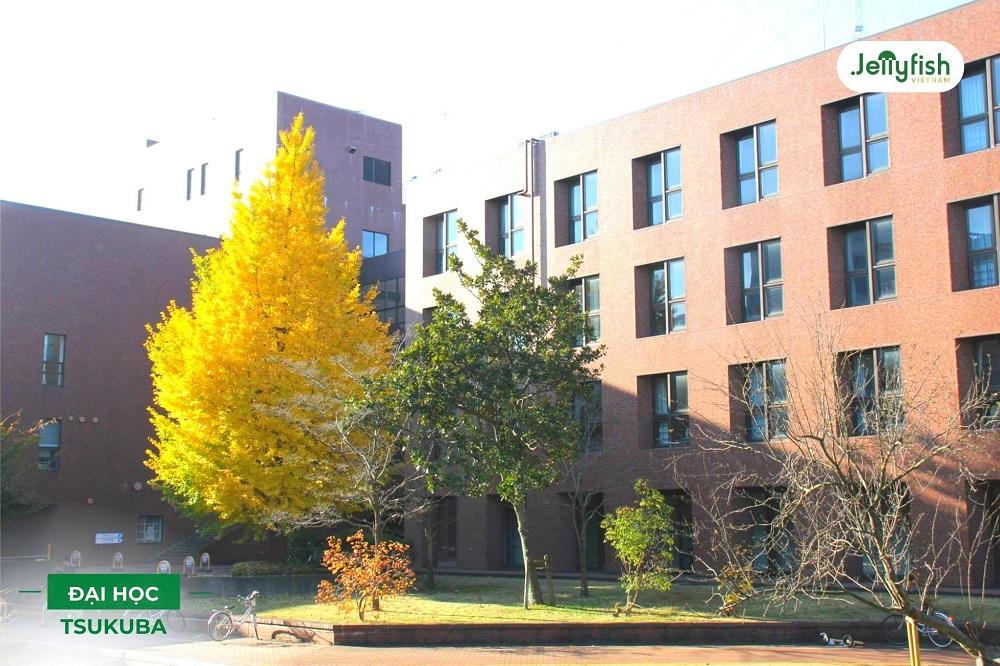 Khuôn viên trường Tsukuba - ảnh 5