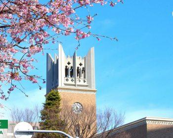 Khuôn viên trường Waseda ảnh 4