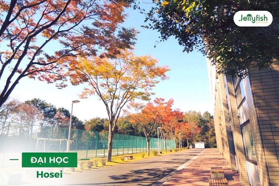 Tại Đại học Hosei có các chương trình đào tạo hệ tiếng Anh cho sinh viên quốc tế