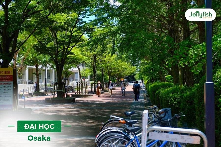 Top trường đại học ở Osaka