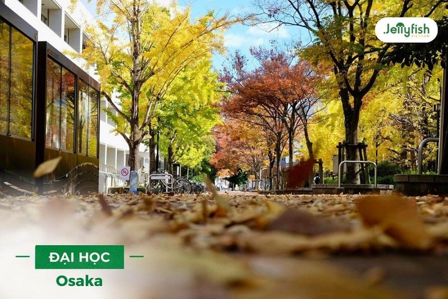 Học bổng Đại học Osaka