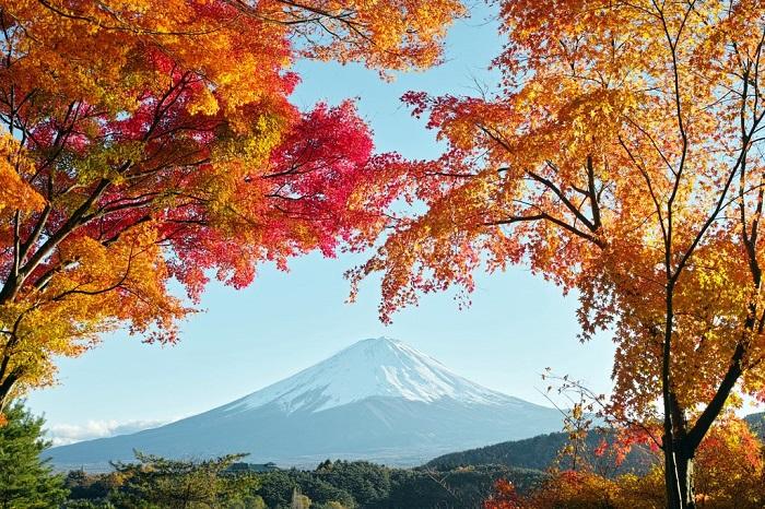 Khung cảnh tuyệt vời của núi Phú Sĩ