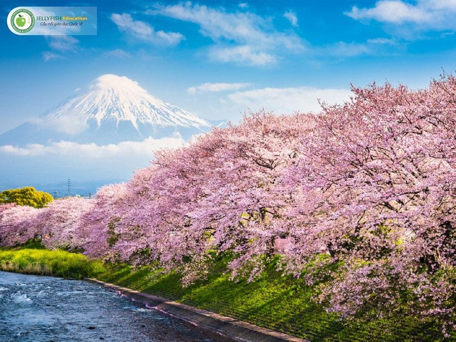 vị trí địa lý và đặc điểm thời tiết Nhật Bản
