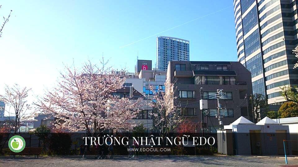 Trường Nhật ngữ Edo