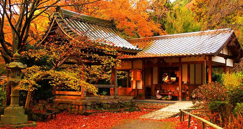 Xiêu lòng trước mùa thu Kyoto đẹp tuyệt vời