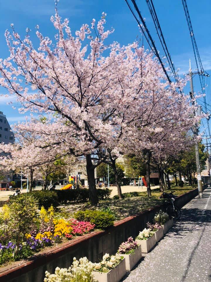 Một số hình ảnh trường Nhật ngữ Human Academy - ảnh 6