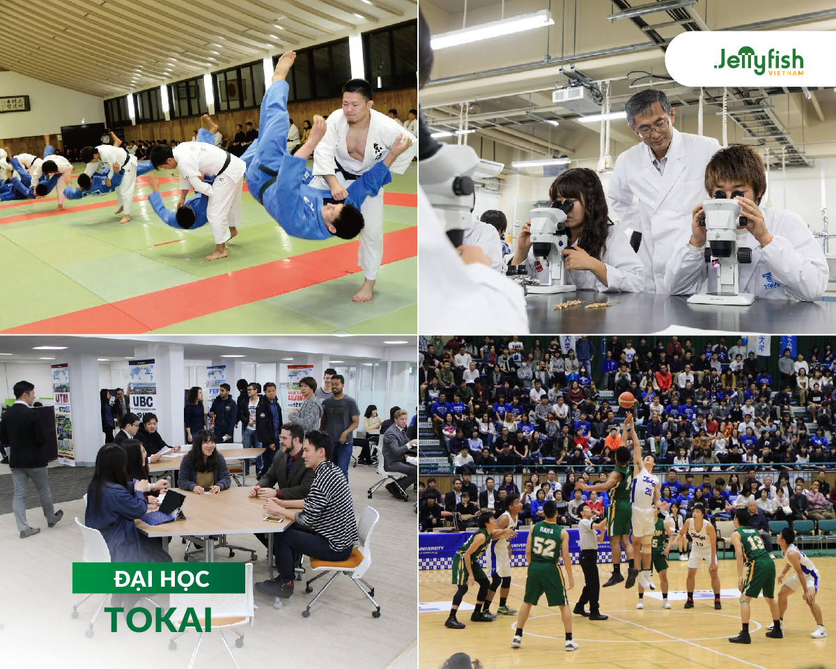 Hoạt động tại Đại học Tokai